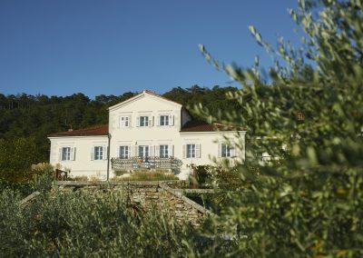 Villa_Bonomo_l'uliveto_5