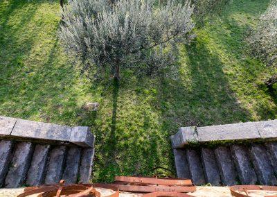 Villa_Bonomo_l'uliveto_9